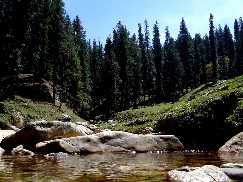Image result for बैरल himachal pradesh