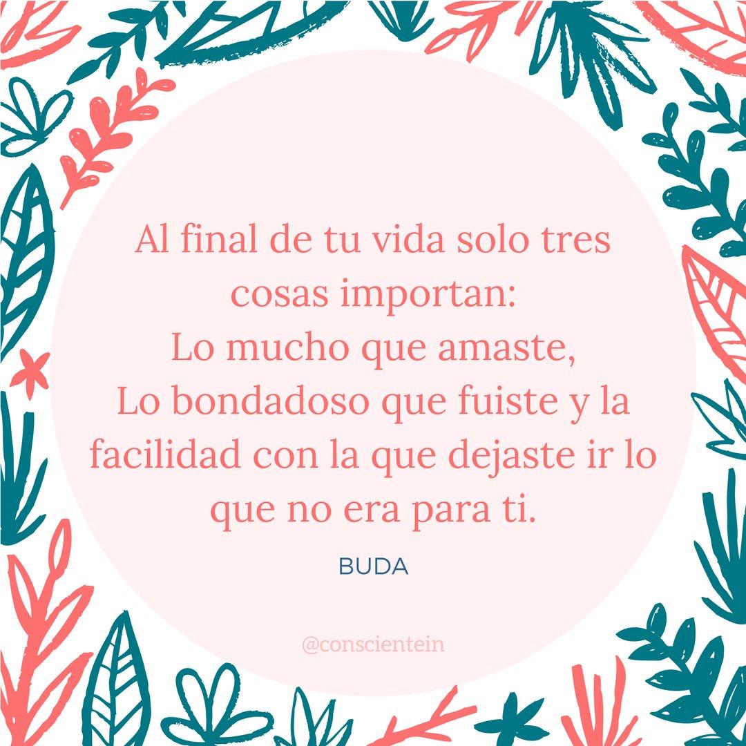 트위터의 In Consciente 님 Al Final De Tu Vida Solo Tres Cosas Importan Felizmiercoles Frasedeldia Buda