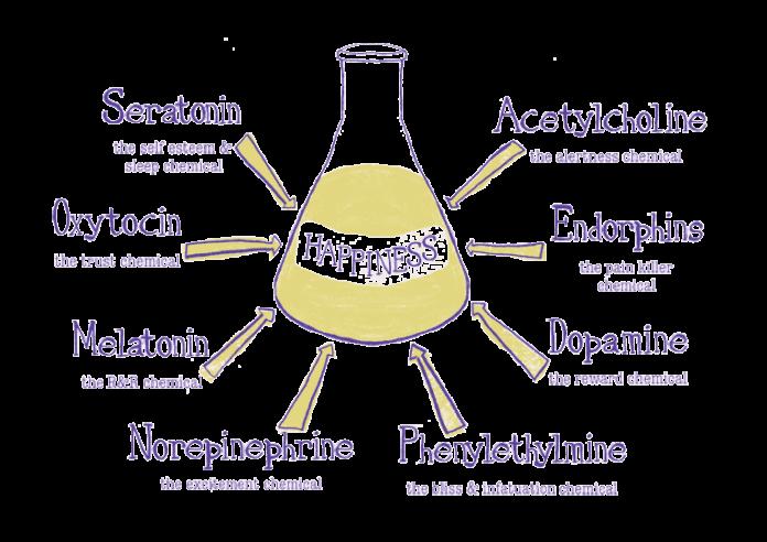Endorphins and oxytocin