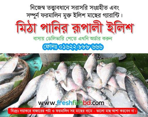 Fresh Fish Bd Freshfishbd Twitter