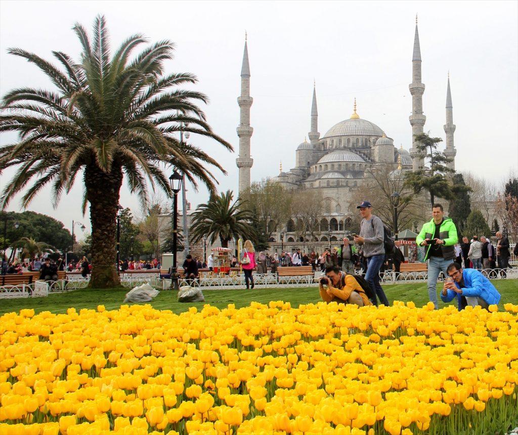 Bilderesultat for istanbul tulipaner