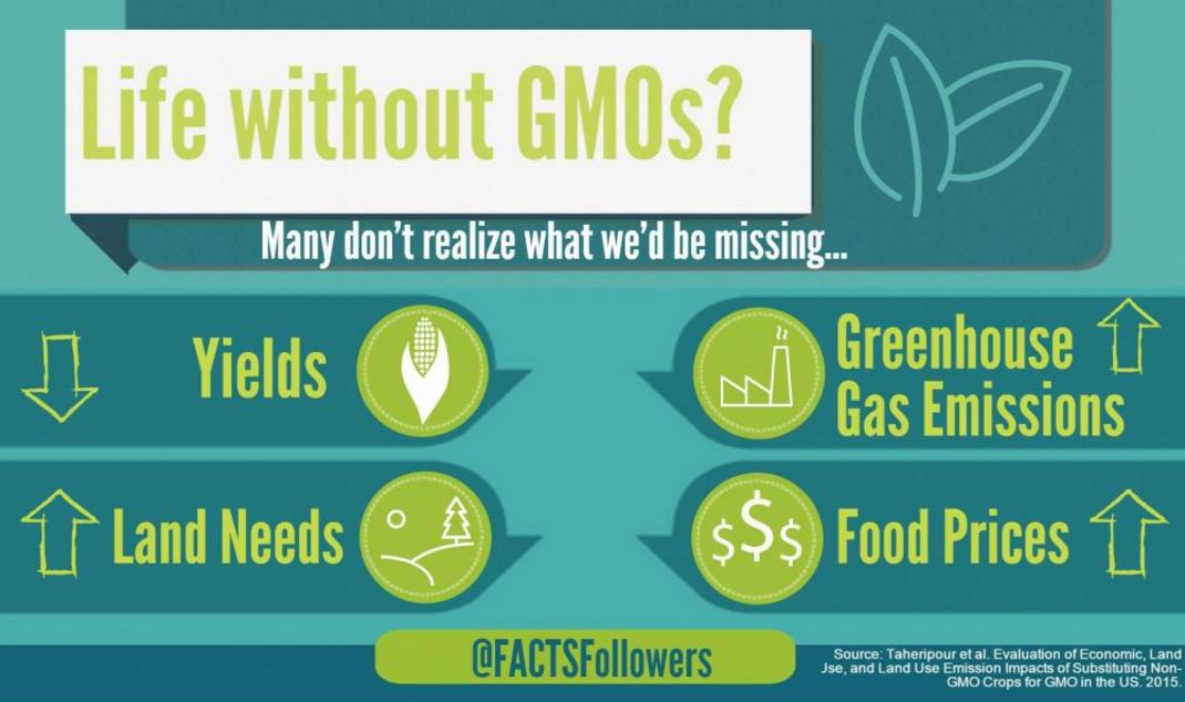 economical impact of gmo products A new peer-reviewed work has been published (april 2013) that outlines some significant global economic and environmental benefits of genetically modified (gm) crops the paper is titled gm crops: global socio-economic and environmental impacts 1996-2011.