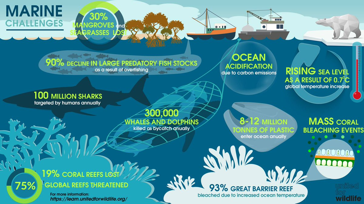 human impact on oceans Ocean-related climate change impacts on human society and institutions will  necessitate responses at scales from the individual to the global.