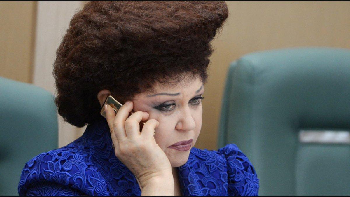 Депутат женщина со странной прической 4