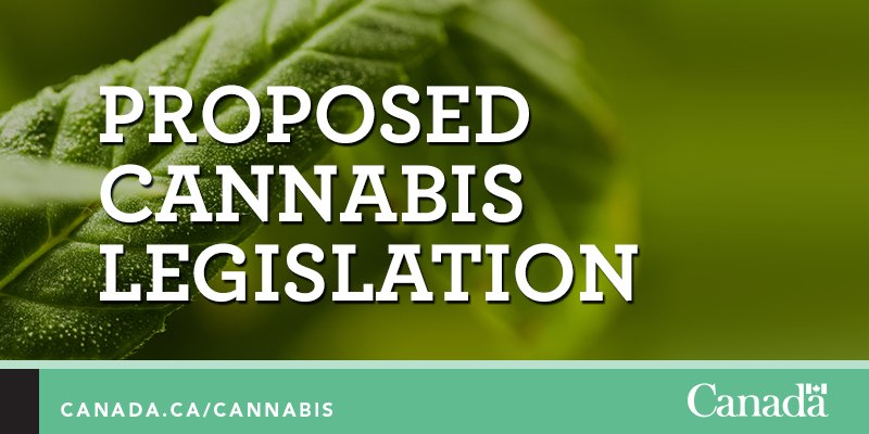 #GoC introduces bill to keep #cannabis away from kids & profits away from criminals. https://t.co/NzyDhrNFwp https://t.co/iVCLzrk3Xi