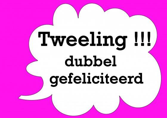 gefeliciteerd met tweeling Realityon Twitter: