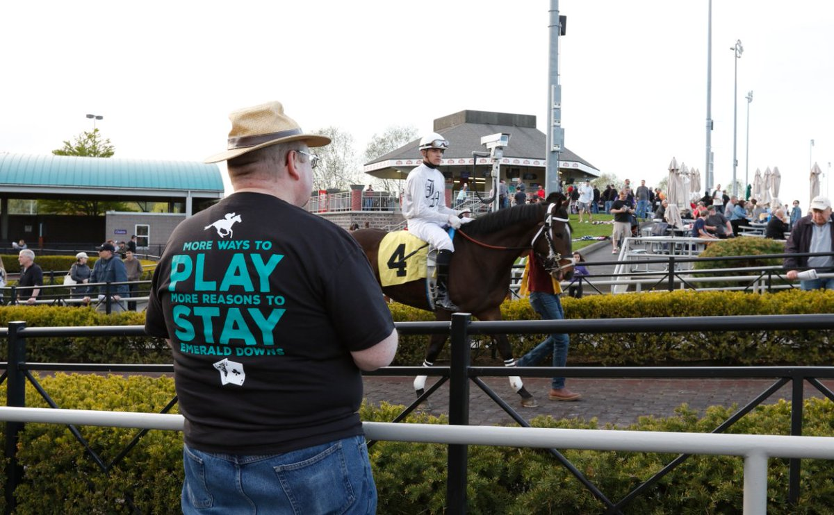 EmeraldDowns photo