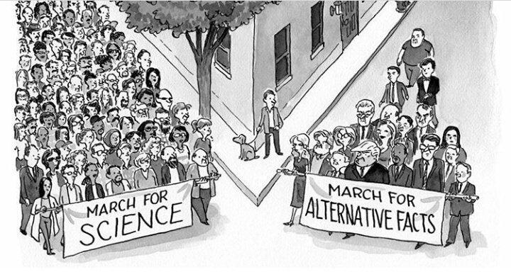 tirinha: no encontro de duas ruas um grupo grande anda com uma faixa escrito marcha pela ciência e na outra rua um grupo menor está com uma faixa escrita marcha por fatos alternativos