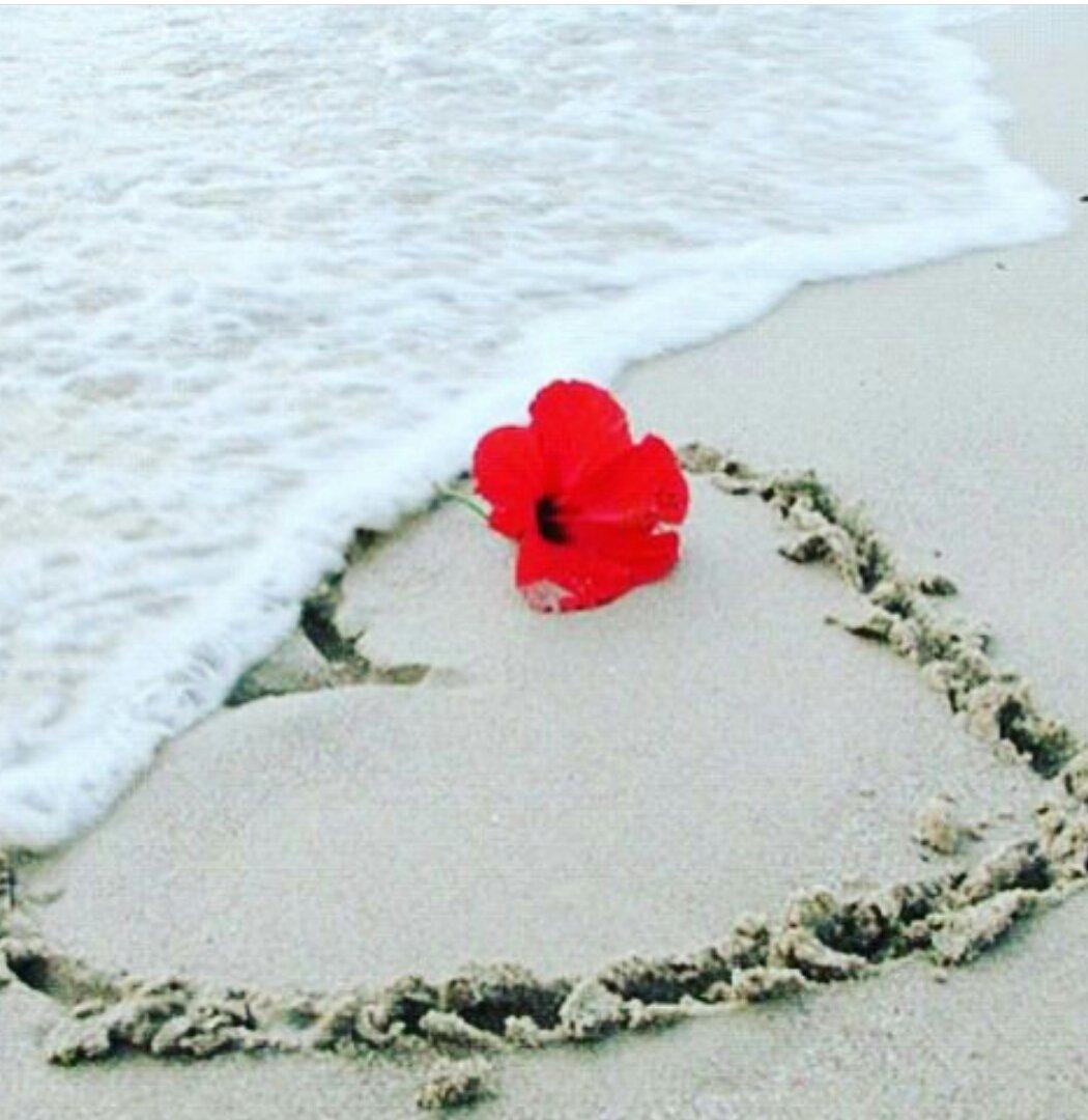 картинка роза сердце и песок сегодня расскажу