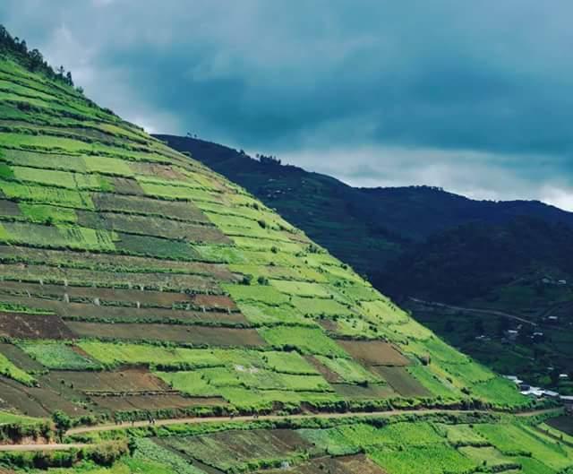 #Landscape photo from lush #Uganda IG /Paul Kirui #wildographer #PearlOfAfrica #Kigezi #tours #AfricaGorillaTreks<br>http://pic.twitter.com/5x5DCgK2TD