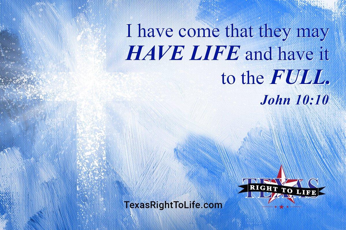 texas right to life txrighttolife  0 replies 6 retweets 9 likes