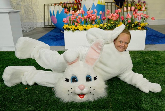 Melissa McCarthy is Sean Spicer in an Easter Bunny costume in new SNL skit https://t.co/txLcMlItbv https://t.co/bCquXYJ4HP