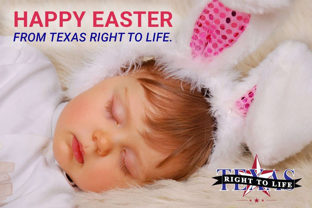 texas right to life txrighttolife twitter 0 replies 1 retweet 6 likes
