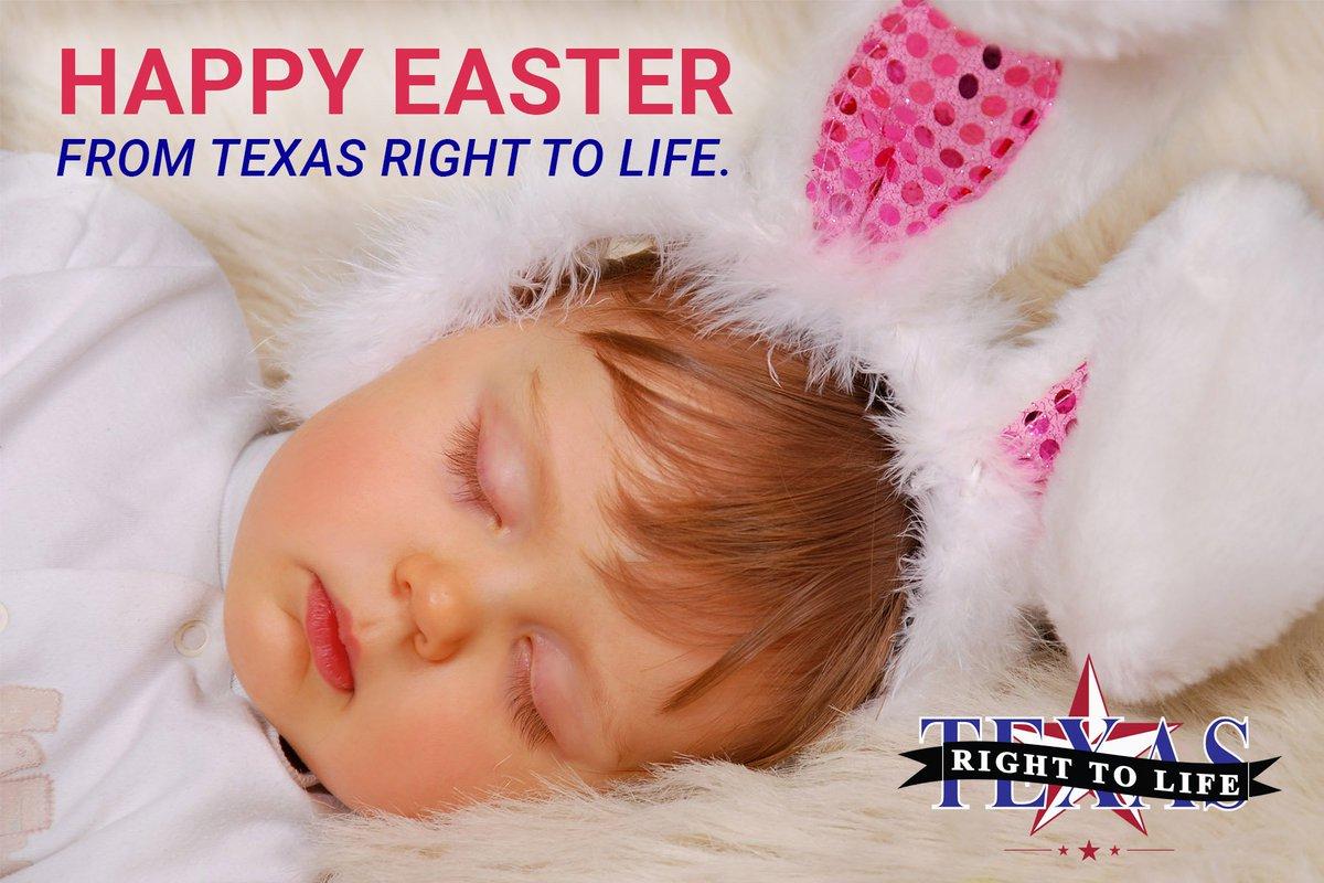 texas right to life txrighttolife  0 replies 1 retweet 6 likes