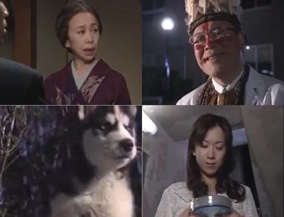 悠 動物 吉沢