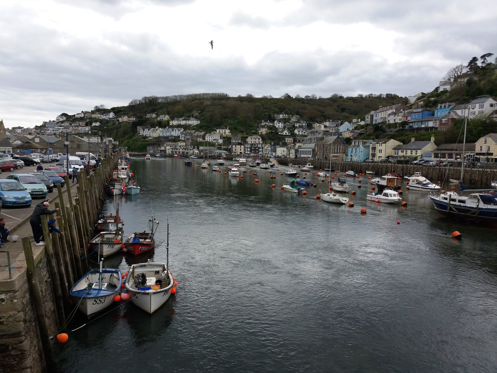 Picturesque Looe