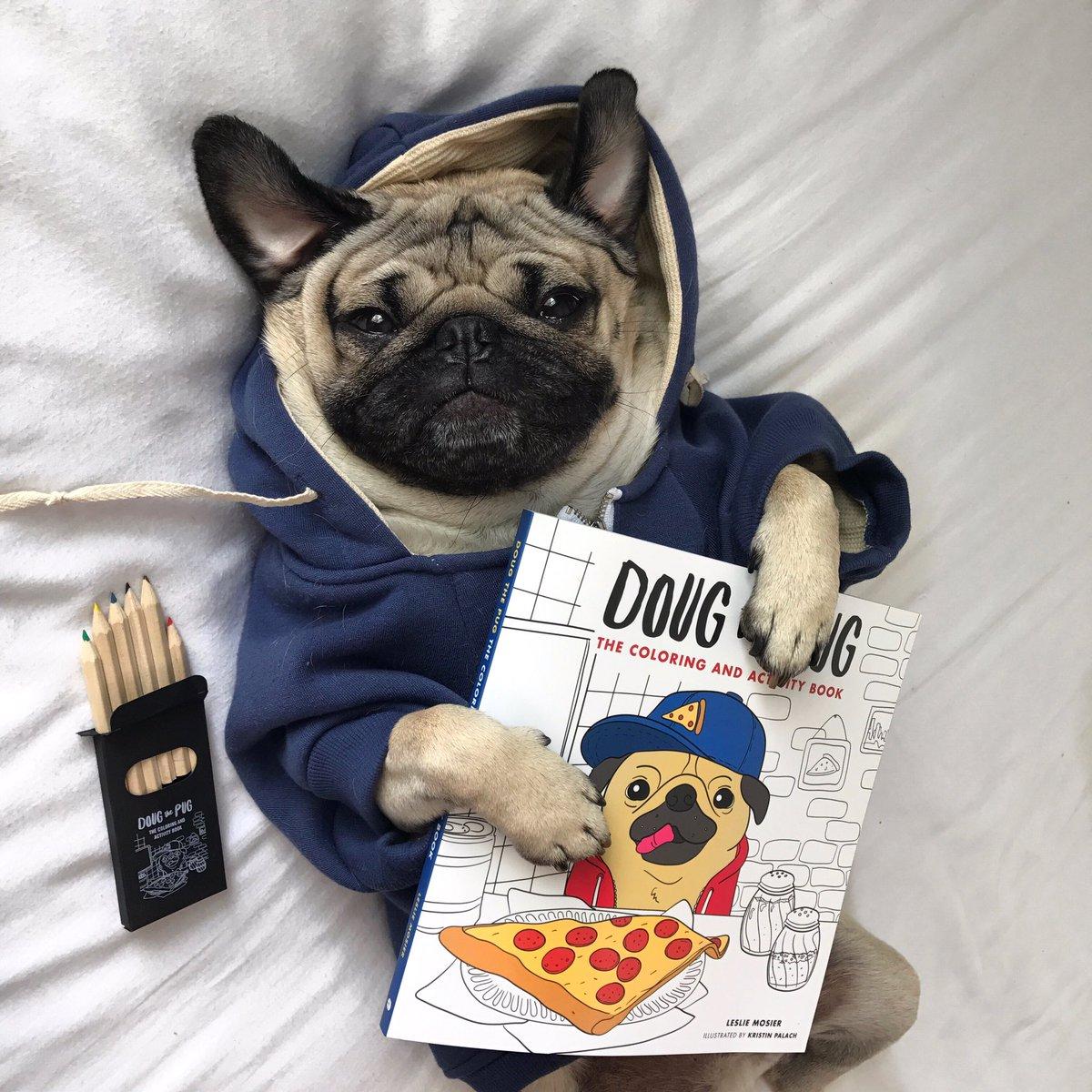 doug the pug on twitter