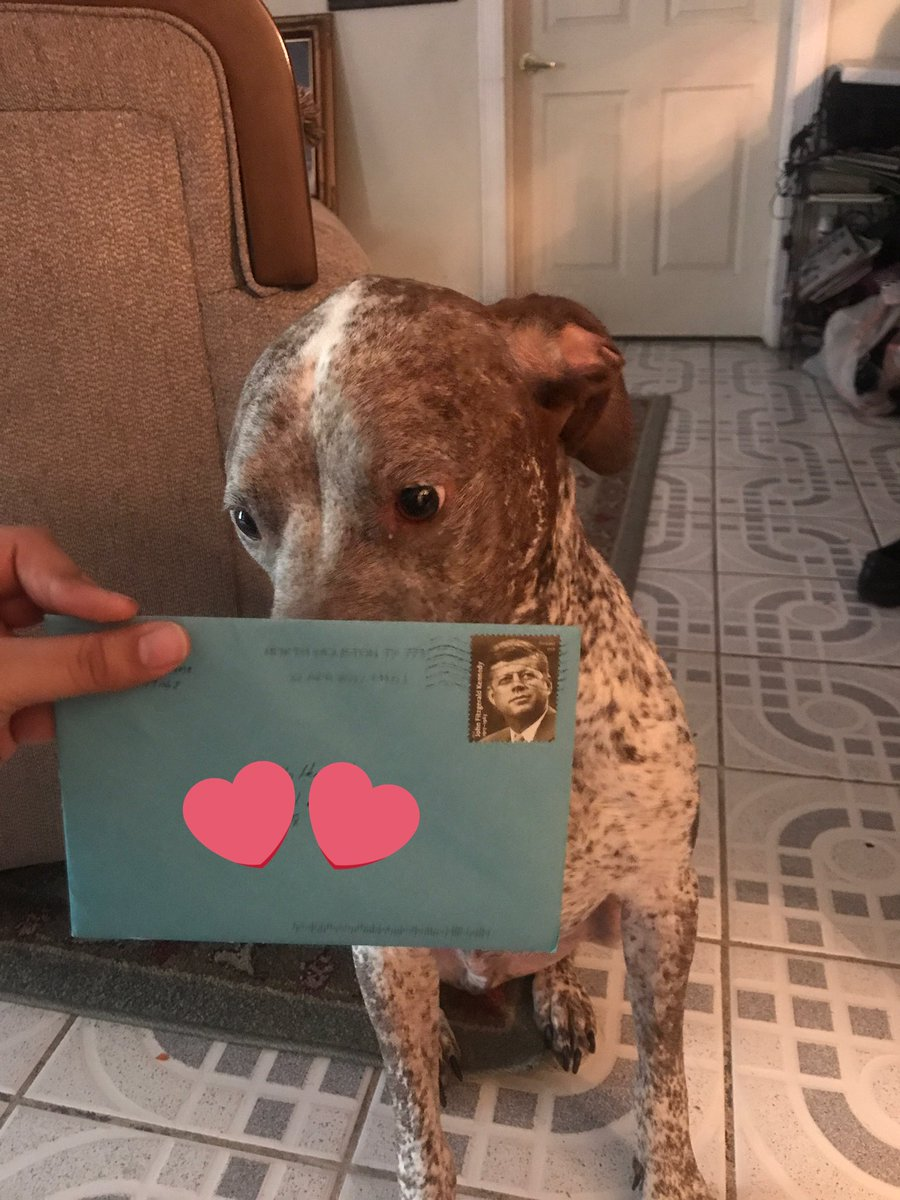 This Sweet Guy Sends B-Day Cards To The Dog He Got With His Ex