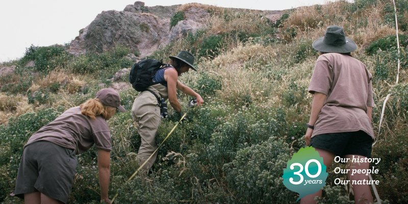 2003: DOC staff conducting vegetation monitoring on Mahuki Island in the Hauraki Gulf. #DOCturns30 https://t.co/u109hONnj0