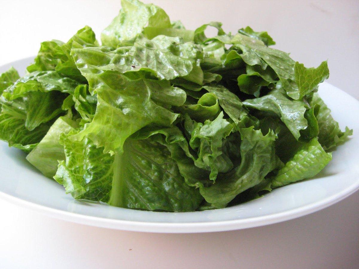 lettuce salads - HD1600×1200