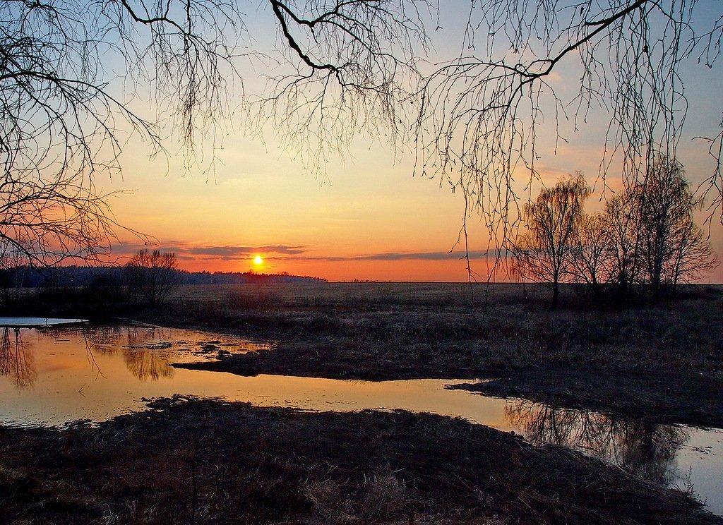 любви стихи на тему вечерний пейзаж установить обои