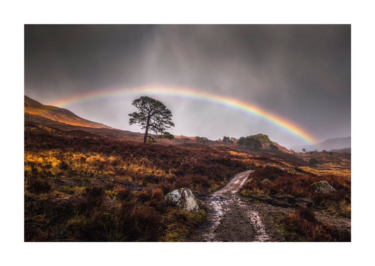 Next, a rainbow arches over Glen Affric for @Vemsteroo. Beautiful moment #WexMondays https://t.co/wR3RbFX0qj