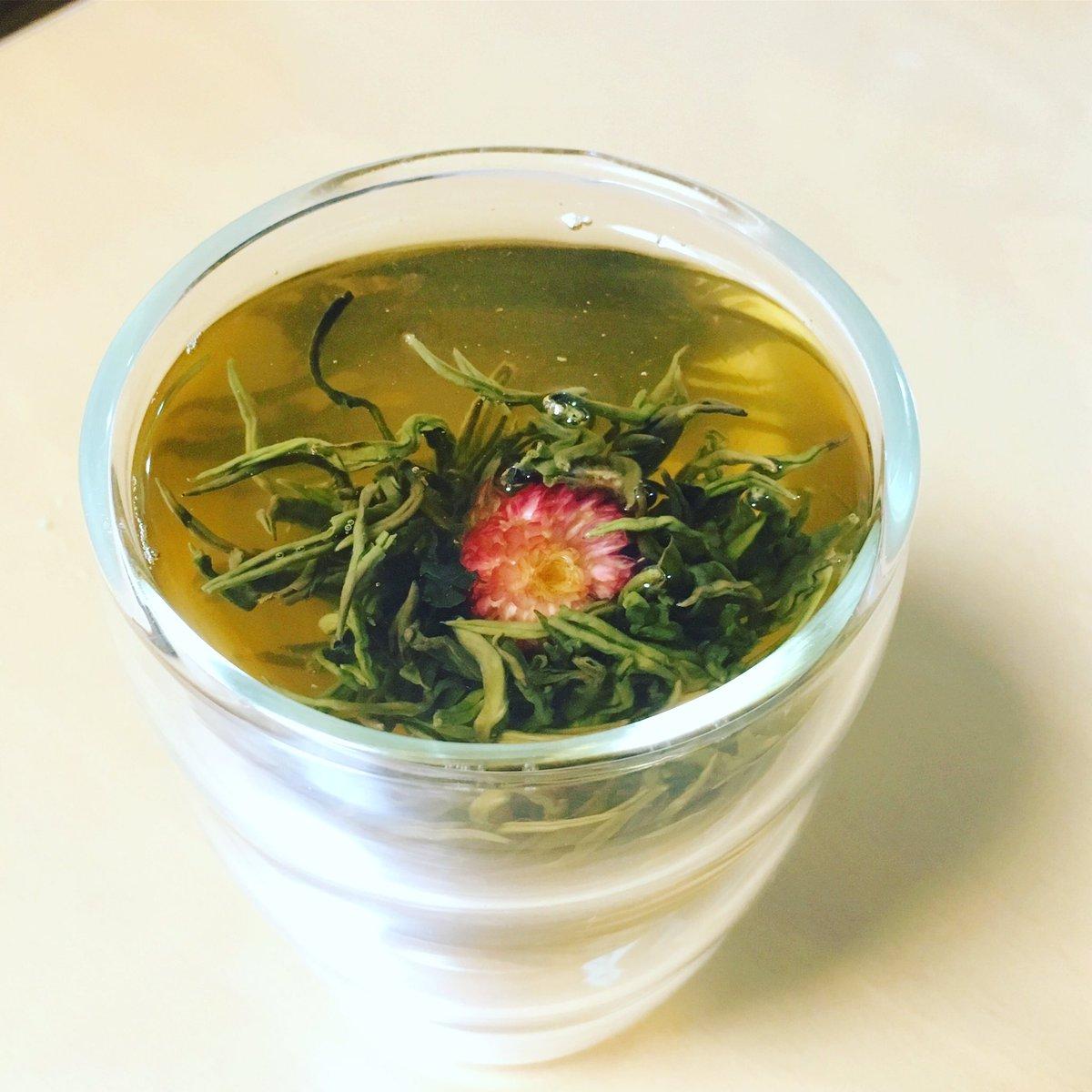 中華街で買ったジャスミン茶w淹れてみたらどう見てもモルボルwww