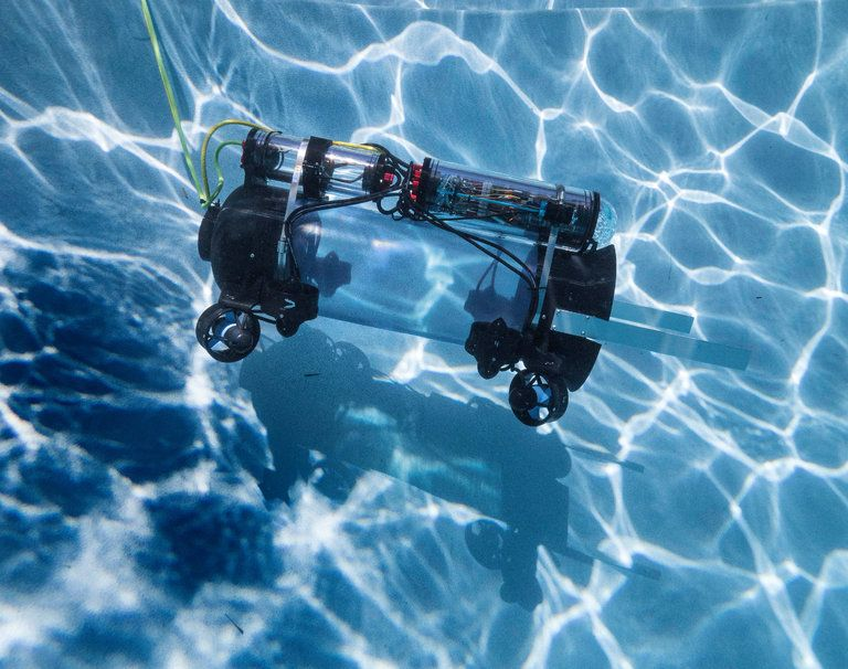 In America's Cup waters, a robot will tackle the invasive #Lionfish. Great use of #STEM to solve a real-life issue. https://t.co/aF0eh7u5pi https://t.co/kXeG9VzRfP