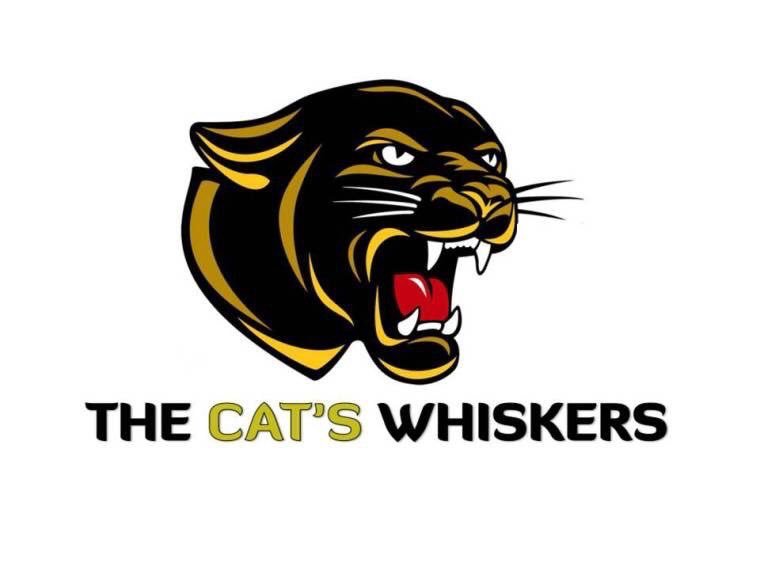 The Cats Whiskers (@CatsWhiskersTV) | Twitter