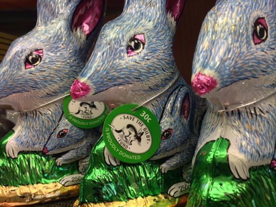 Easter bilbies