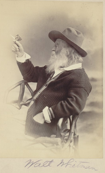 An 1877 photo of American poet Walt Whitman, holding his signature butterfly. http://t.co/X6CkGom6JJ http://t.co/Iw9hm73YED