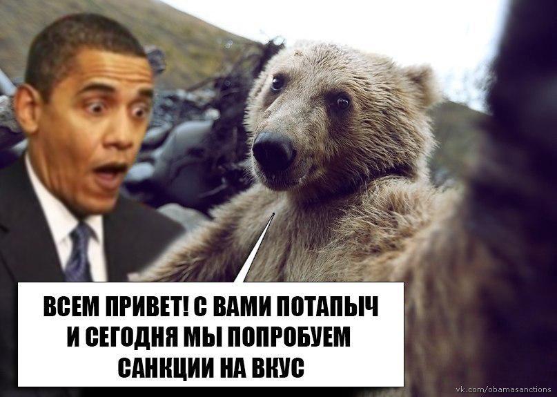 поэтому картинки санкции медведь того, тело