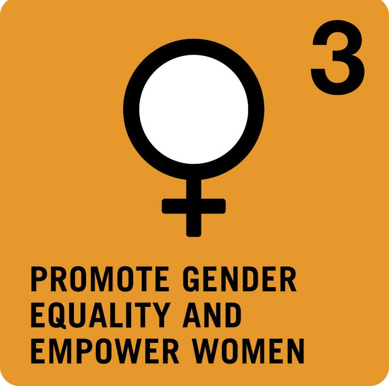 Thumbnail for #MDGchat: Progress on achieving gender equality