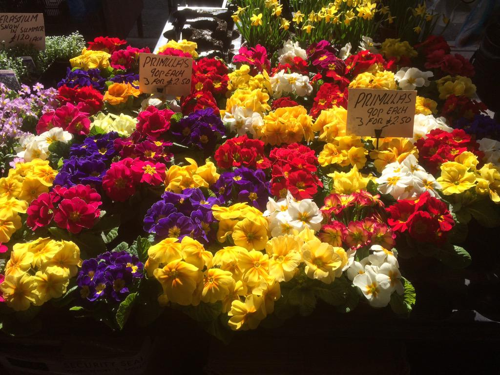 Bolton Markets On Twitter Beautiful Kay S Flowers They