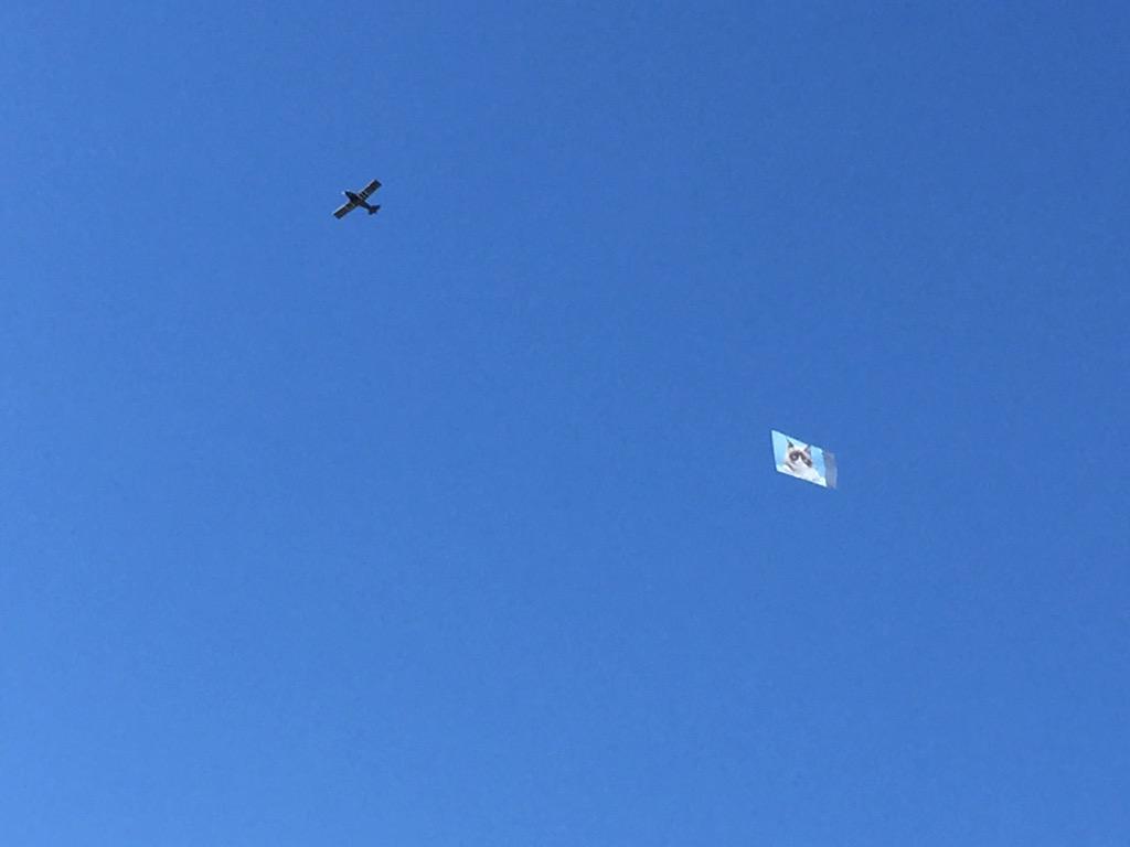 Grumpy cat in the sky! #SXSW http://t.co/5aPyUyAsCw