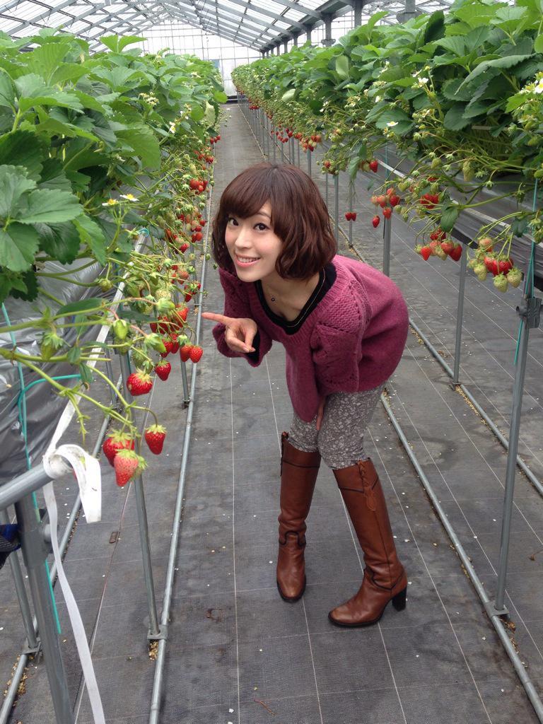 徳島アニメ大使ひとつめは、大住いちご農園さん♥️おいしくて、楽しくて、嬉しい所でした!一緒に楽しんでくださったみなさん、足を運んでくださったみなさん、ありがとうーーー✨さぁ、次は……??! #machiasobi #マチアソビ pic.twitter.com/zYv1jp4oUM