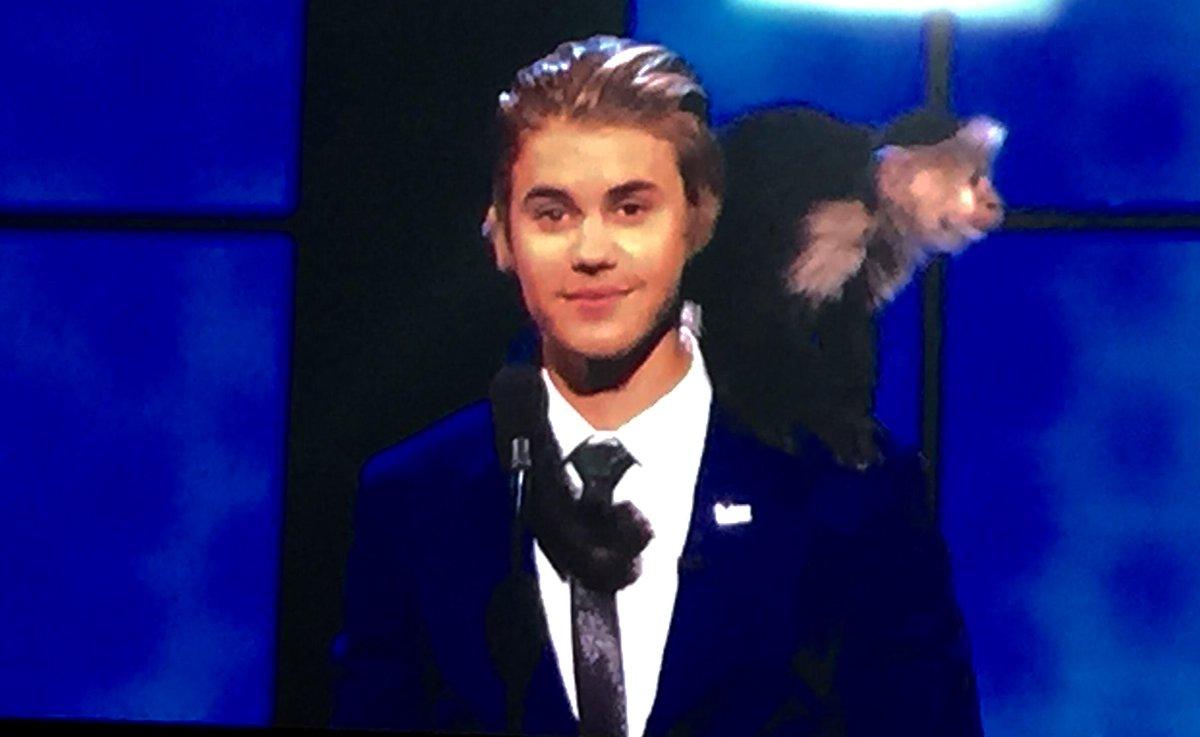 The monkey returns! #BieberRoast http://t.co/7E2FmyoTYB