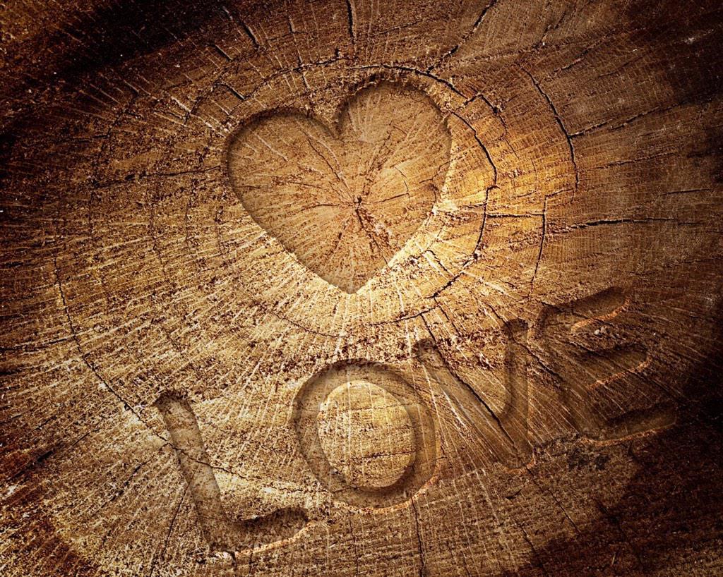 Donde estas corazón. CAMyFvmWgAARoFp