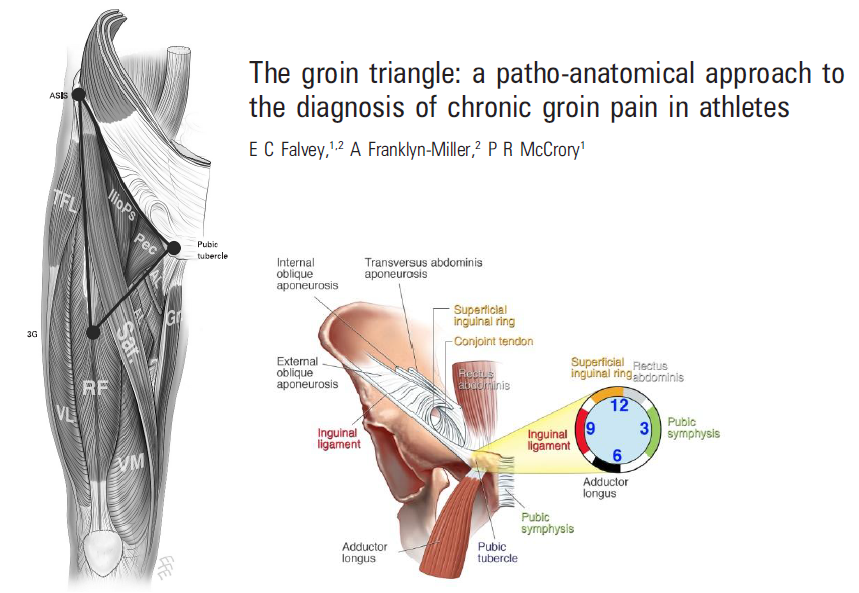 Hip Athletic Groin Pain Part 1 Rayner Smale