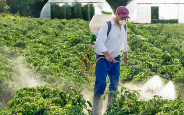Residui di pesticidi in frutta e verdura