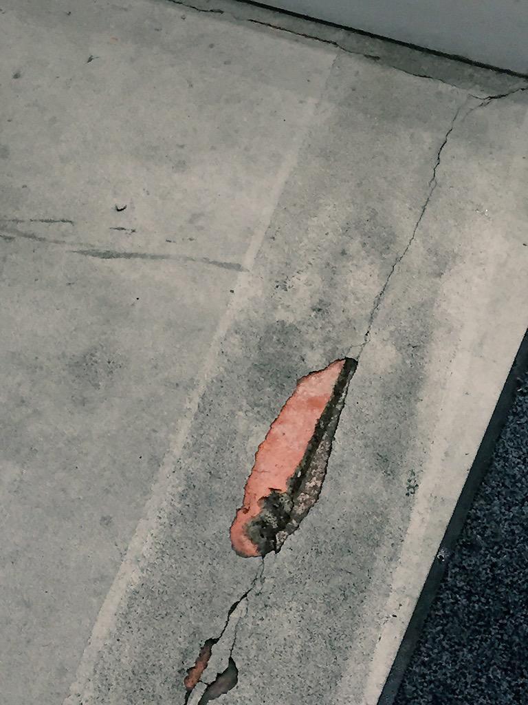帰り道にシャケ落ちてたと思ったらただのヒビ割れだった pic.twitter.com/ocv1PW78zB