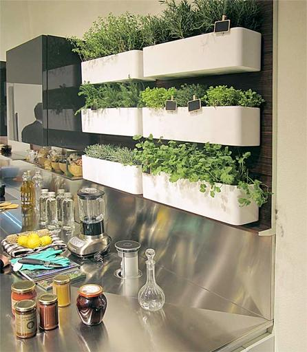 A6 A large #herbgarden wall! #ChatWithStyle {photo: http://t.co/PkPEdXvuTv} http://t.co/NsK9NAi7UH