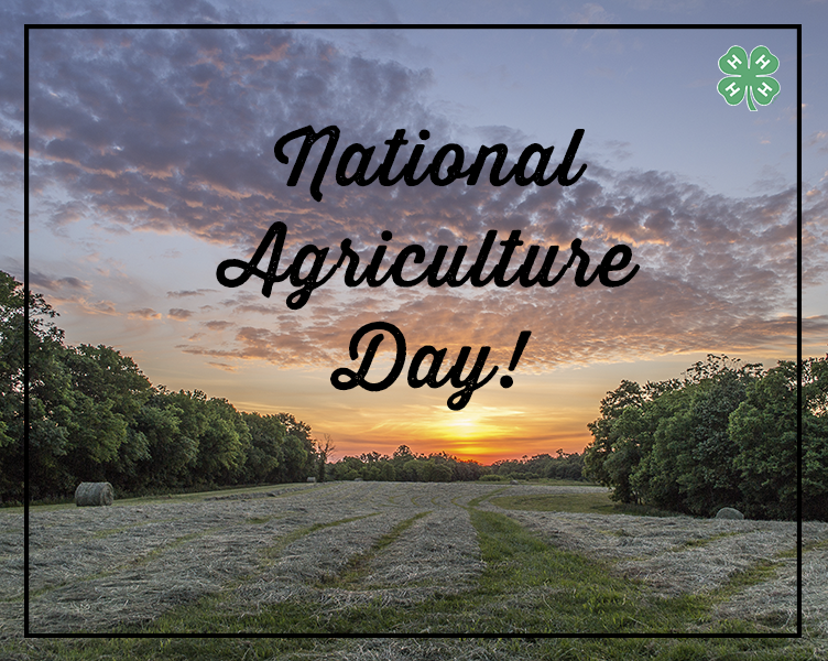 This Nat'l #AgDay, appreciate the agriculture that preserves our world, strengthens humanity and educates our youth. http://t.co/jXtUr2lxa4