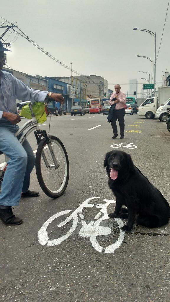 Visitas caninas a #PalaceParaTodos. @LaCiudadVerde @PartidoLAIN http://t.co/jneumYunBl