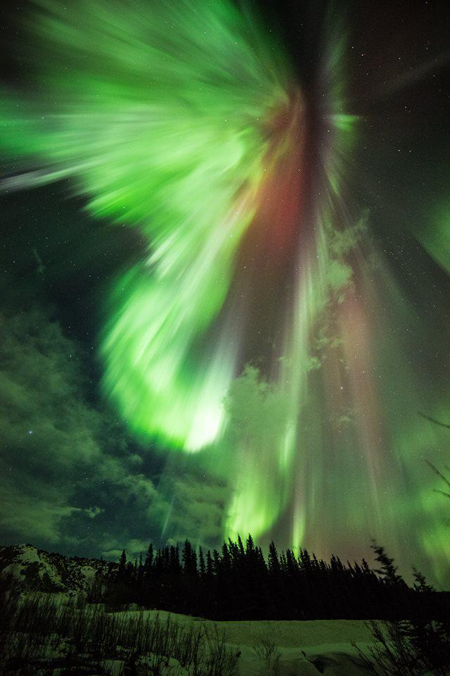 おおおお……昨晩のこのオーロラショット、今まで見た中でベストかも。facebook.com/NASA.GSFC/phot… pic.twitter.com/VFAZq85a2Q