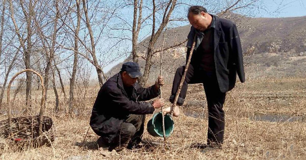 Blind Man And His Armless Friend Spend 10 Years Planting 10,000 #TREES In China (13 pics):... http://t.co/p1ZrbSBjT1 #Environment...