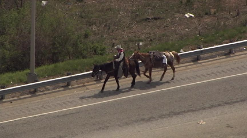 #BREAKING: A man on a horse is traveling north on I-75 at downtown connector #wsbtv http://t.co/wxCvBzPJlN