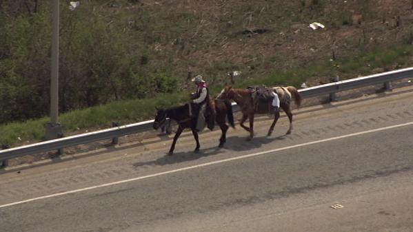 Only in Atlanta. RT @wsbtv: WATCH LIVE: Man riding horse traveling along downtown connector: http://t.co/6qUF3bx4VF http://t.co/U3ErOTh0sQ