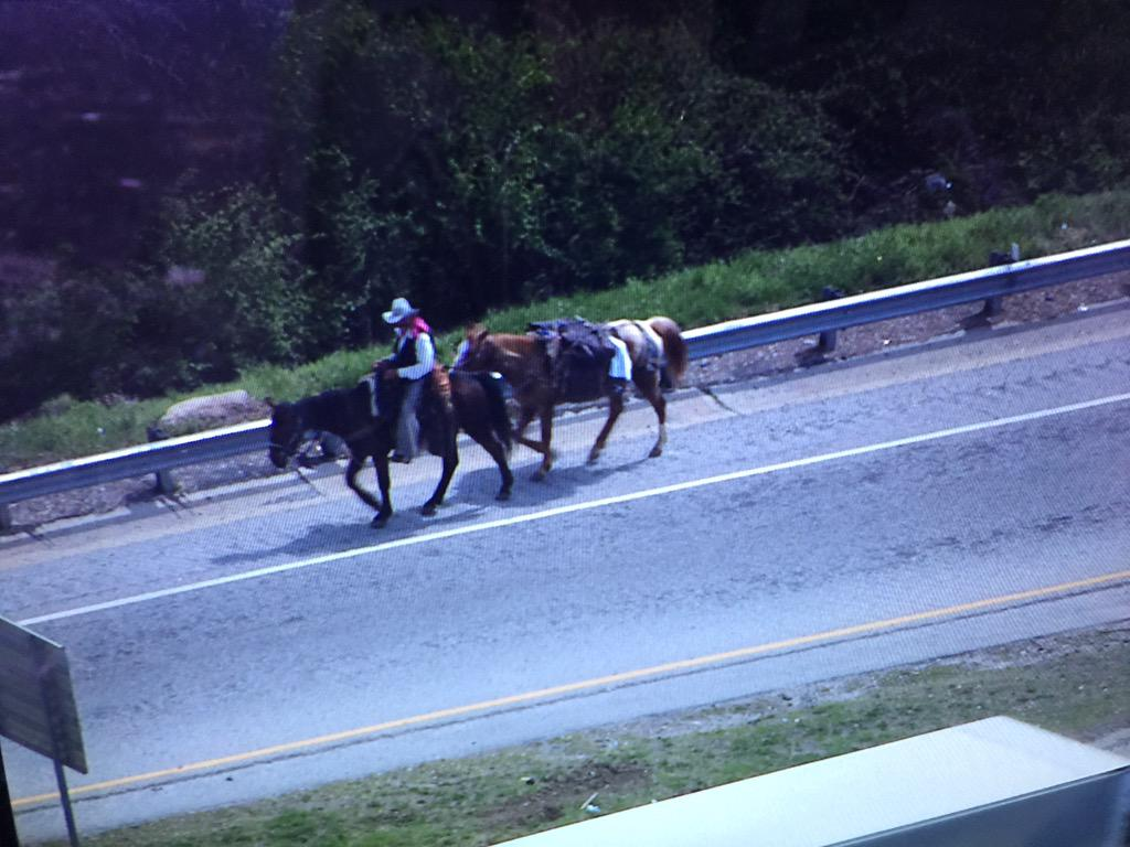 Just a regular Wednesday in Atlanta. RT @ajc: Man spotted riding horse on Downtown Connector http://t.co/i918jkb2gI http://t.co/NrOU6YjBGN