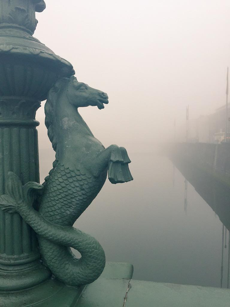 Mr. Fog prowling the streets of Dublin this morning. http://t.co/kU81ClANzn
